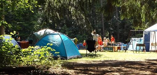 El campamentismo estimula la buena convivencia y el amor al medio ambiente