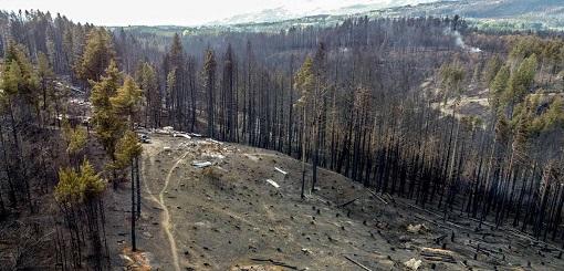 Continúan los reclamos por los incendios en Lago Puelo